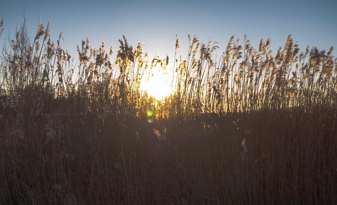 Bijeenkomst Oost Groningen en Noord Drenthe – Klimaatkennis in de regio 17 feb 2021